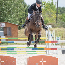 Saut d'Obstacles Equestre